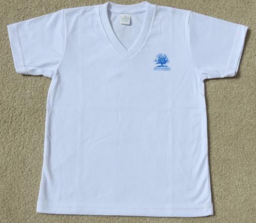 Camiseta Adidas.JPG51ca7ef0a003f